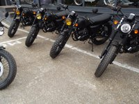 USED 2019 MUTT MONGREL EURO 4 BLACK MONGREL NEW EURO 4 MONGREL