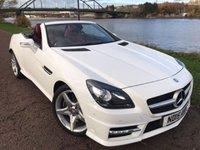 2015 MERCEDES-BENZ SLK 2.1 SLK 250 D AMG SPORT 2d AUTO 201 BHP £18990.00