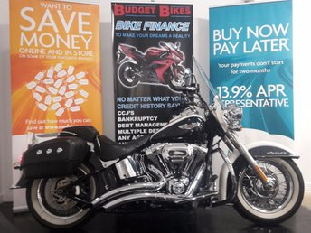 View our HARLEY-DAVIDSON SOFTAIL