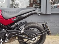 USED 2019 BENELLI LEONCINO 2019 THE LEGEND IS BACK