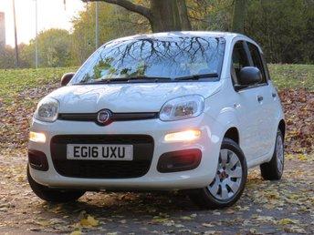 View our FIAT PANDA
