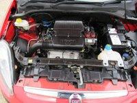 USED 2011 11 FIAT PUNTO EVO  1.2 8v MyLife (s/s) 5dr FULL HISTORY IN RED