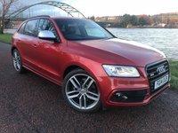 USED 2014 14 AUDI Q5 3.0 SQ5 TDI QUATTRO 5d AUTO 309 BHP **MASSIVE SPEC**