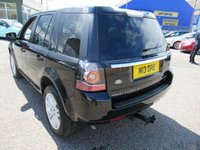 USED 2013 63 LAND ROVER FREELANDER 2.2 SD4 HSE LUXURY 5d AUTO 190 BHP