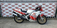 USED 1984 A YAMAHA RZV 500R 2 Stroke Sports Classic Superb, unmolested, very low mileage