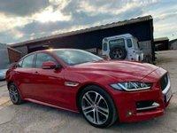 USED 2015 15 JAGUAR XE 2.0 TD 180 BHP AUTOMATIC R-SPORT RED DIESEL LEATHER SAT NAV DAB WARRANTY FINANCE STUNNING CONDITION MOT £30 TAX 70 MPG