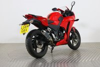 USED 2014 64 HONDA CBR300 ALL TYPES OF CREDIT ACCEPTED. GOOD & BAD CREDIT ACCEPTED, 1000+ BIKES IN STOCK