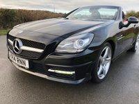 2014 MERCEDES-BENZ SLK 2.1 SLK250 CDI BLUEEFFICIENCY AMG SPORT 2d 204 BHP £10995.00